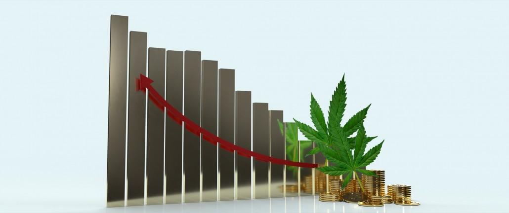 cannabis_210224_2